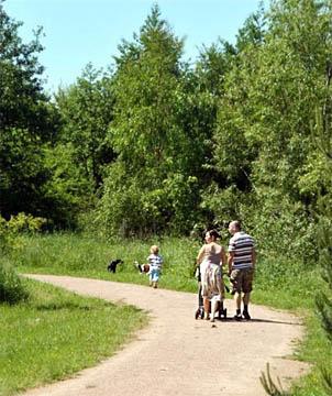 Family walking in Brickfields St.Helens