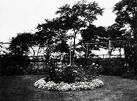 Rose garden Sutton Hall Cottage