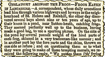 Onslaught Amongst The Frogs – Frogs Eaten in Lancashire
